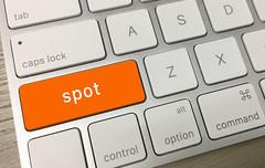 Spot Key