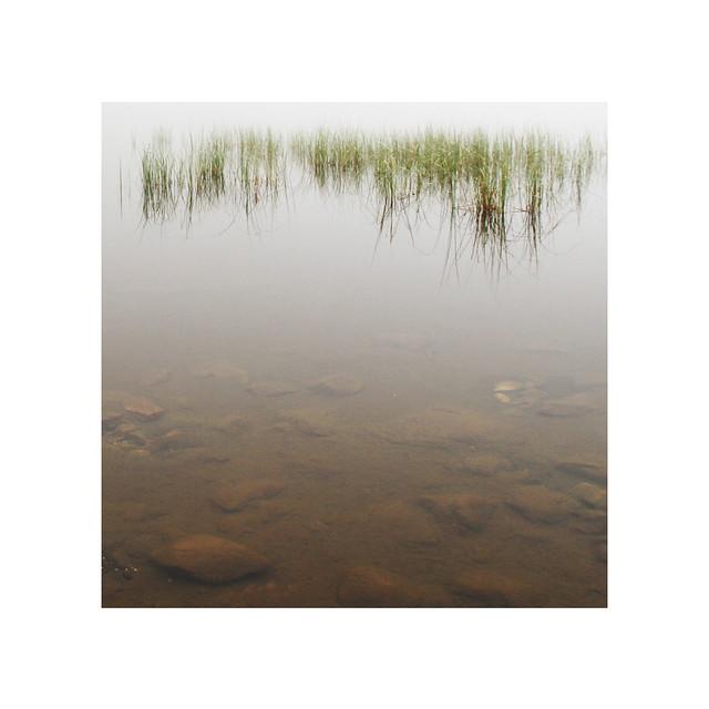 Les rives de l'étang de Lers