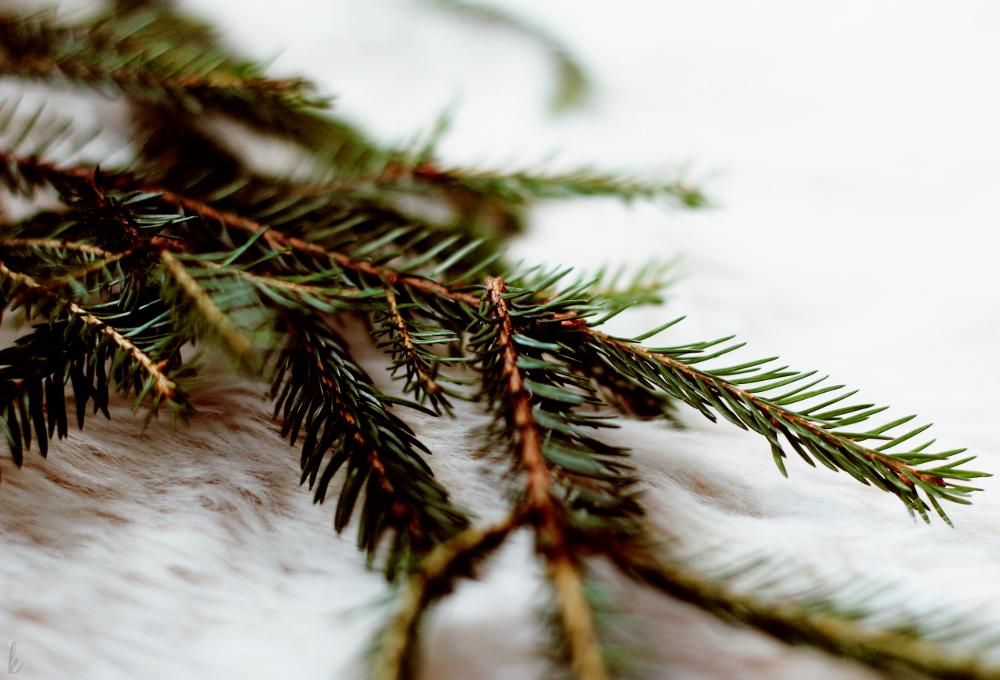 joulukalenteri 2017 arvonta