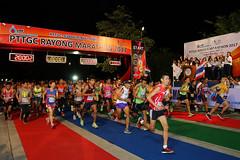 RYmarathon2017_Higlight-67