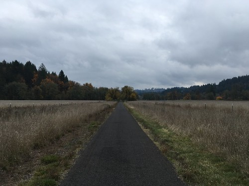 Heading into Wingham Farms on the Banks Vernonia Trail