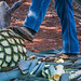 2017 - Mexico - Tequila - Blue Agave Piña por Ted's photos - For Me & You