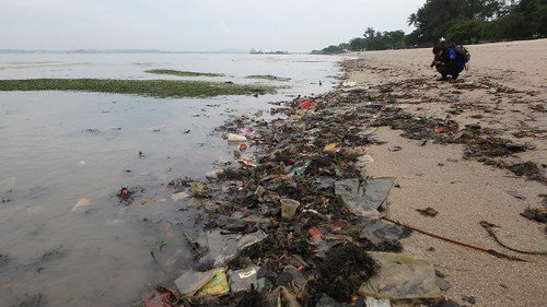 Marine litter on Changi Beach