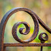 Rusty Iron Gate by roseysnapper
