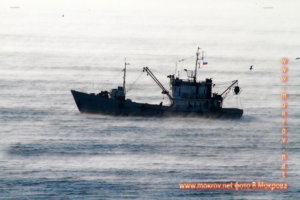 Город Анапа фотографии кораблей