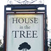 House in the Tree, Staverton.