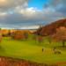 Torvean Golf Course, Inverness, Scotland