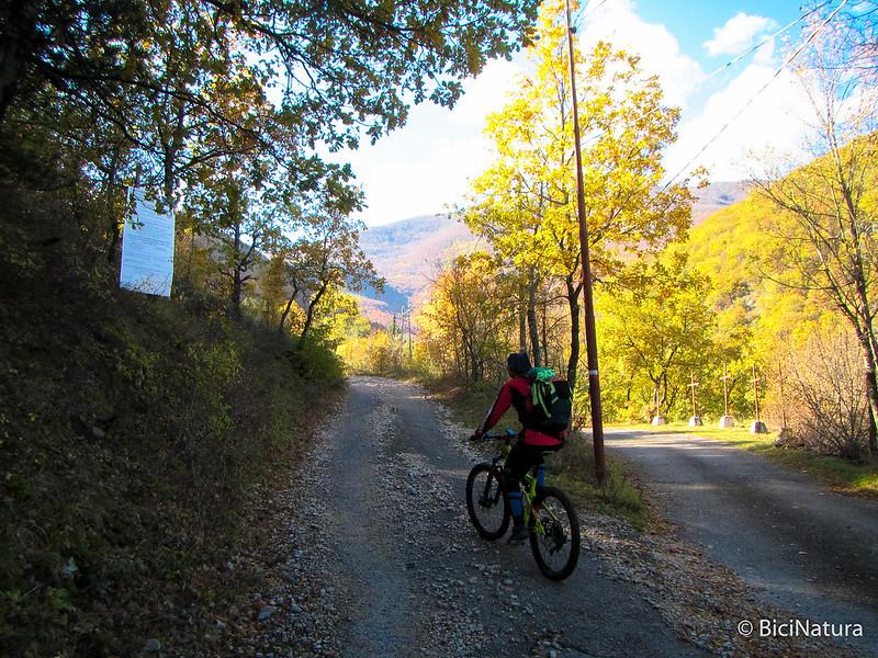 Monte Romanella