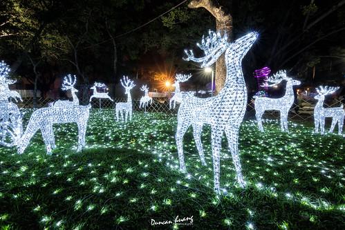 屏東公園聖誕馴鹿