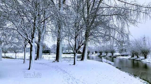 Happy Holidays from Odijk, Netherlands - 0451