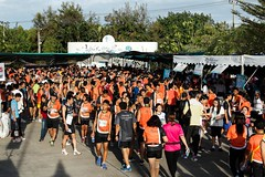 RYmarathon2017_Higlight-164