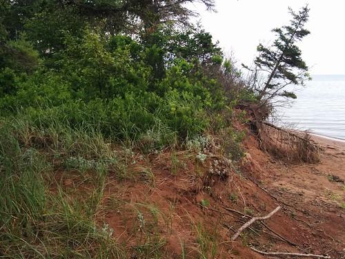 Precarious #pei #princeedwardisland #belfast #campbuchan #scouts #northumberlandstrait #beaches #latergram