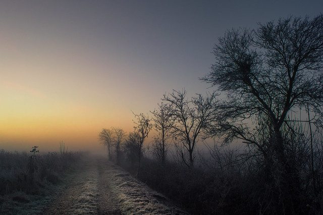 Frozen Eifel Sunrise