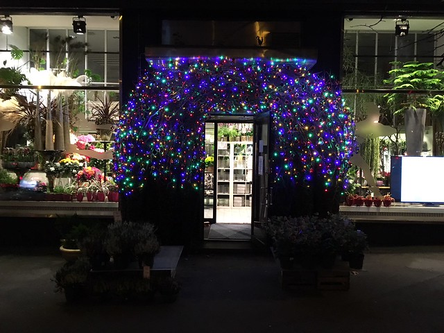Runeberginkadun kukkakauppa