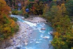 Stream with autumn
