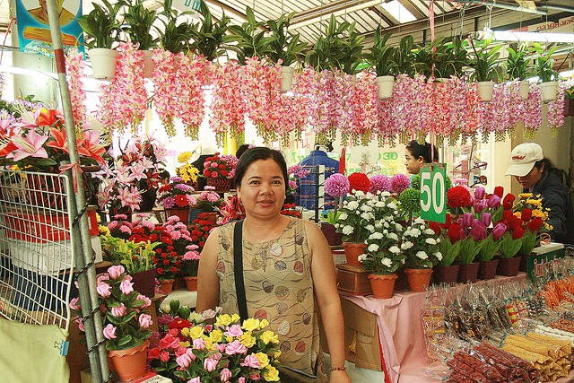 the artificial flower lady in the market