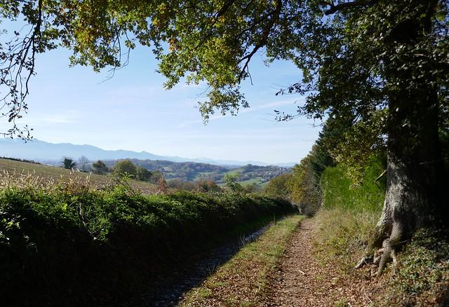 Le village sur son coteau, Bosdarros, Béarn, Pyrénées Atlantiques, Aquitaine, France.