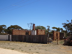Sandalwood in the Murray Mallee. Ruins of a fine local limestone residence.