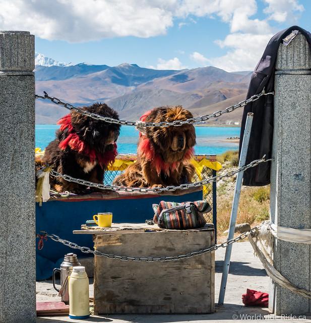 Tibet_-31