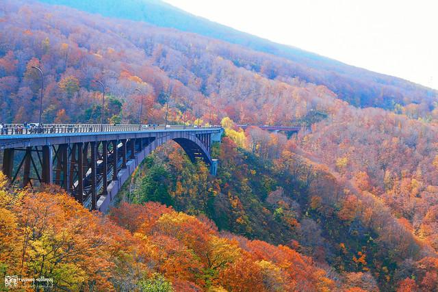 秋色是山巒中的一抹紅 | 07