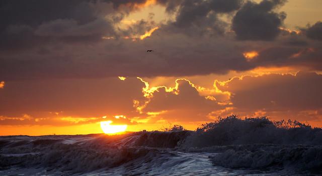 sun whips water