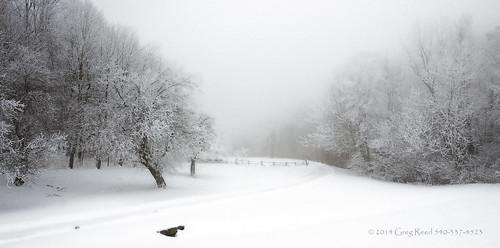 fog foggy winter snowstorm snowfall snowedin virginia blueridgeparkway mountain mountains blueridgemountains snowing