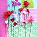 Blüten des Alpenveilchen in Weiß, Rosa, Pink und Rot