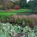 Autumn Colours @ Ightham Mote