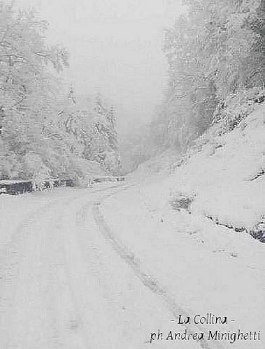 Nevica sulla Montagna Pistoiese