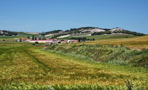 Near Velliza