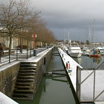 Snowy Preston Docks