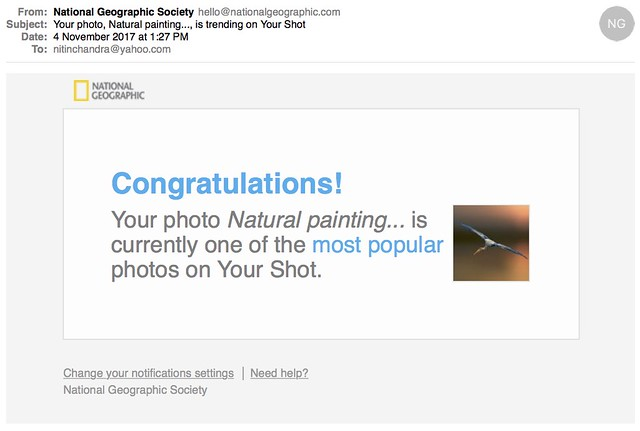 Your photo Natural painting is trending on Your Shot