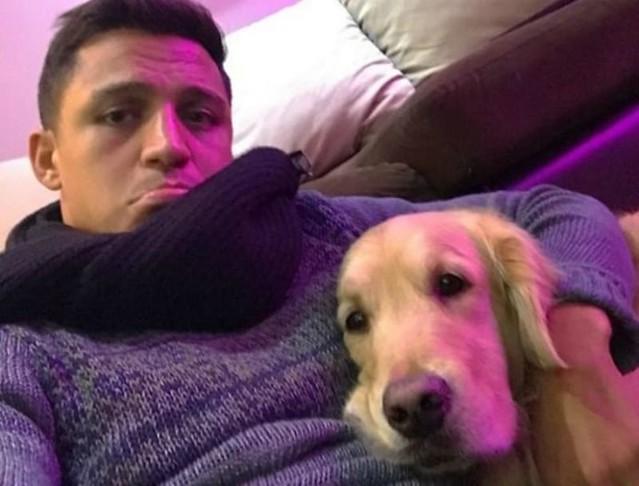 Arsenal Sudah Ketemu Pengganti Alexis Sanchez