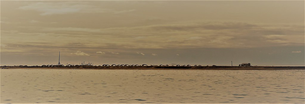Cross Island Whaling long