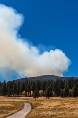 Smoke Rising from a Prescribed Burn in Valles Caldera National Preserve