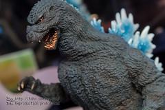 GodzillaF2017-74