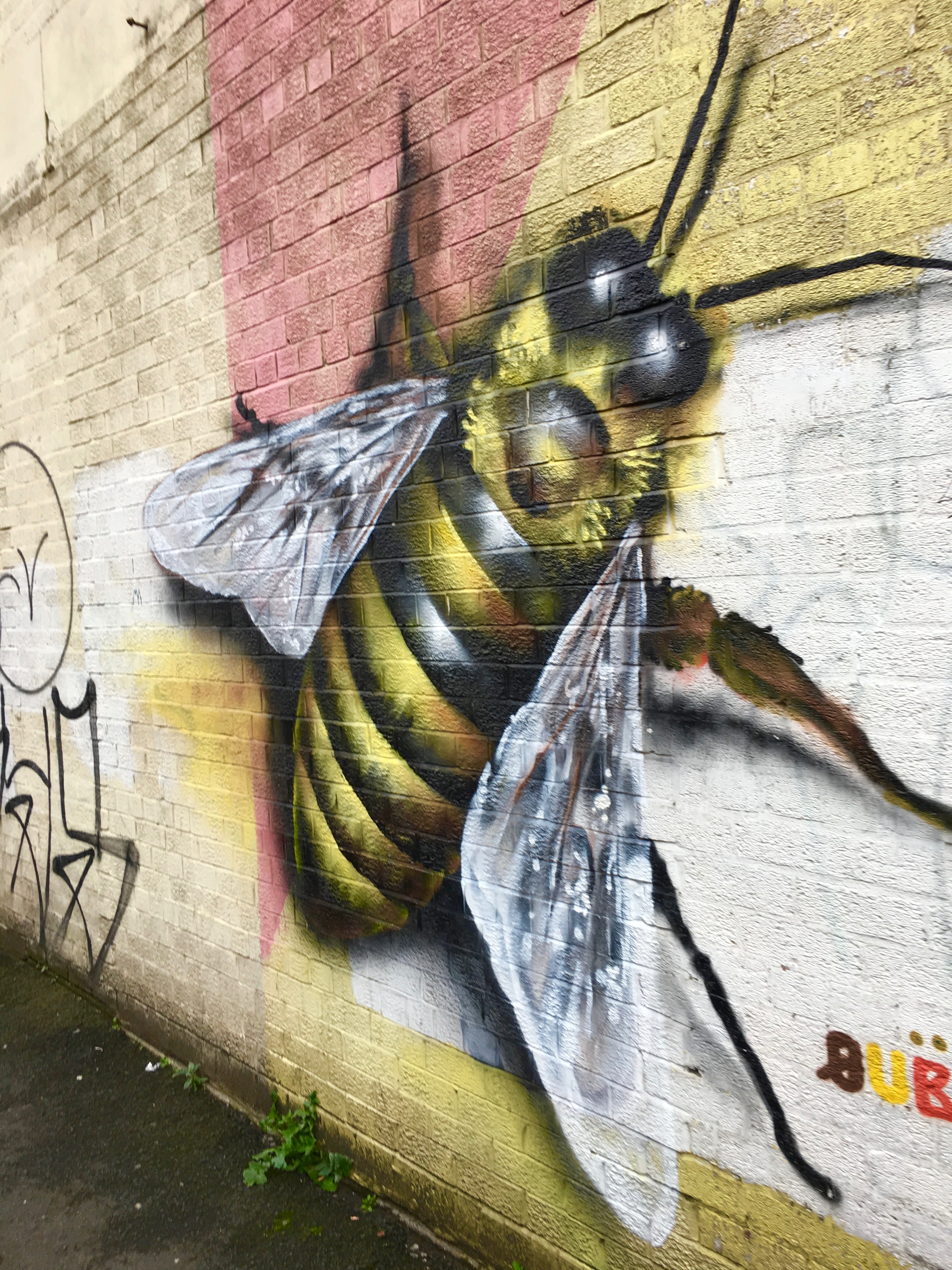 Colour Walk Manchester - bee