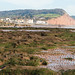 Sidmouth Beach Low Tide20171102-2349