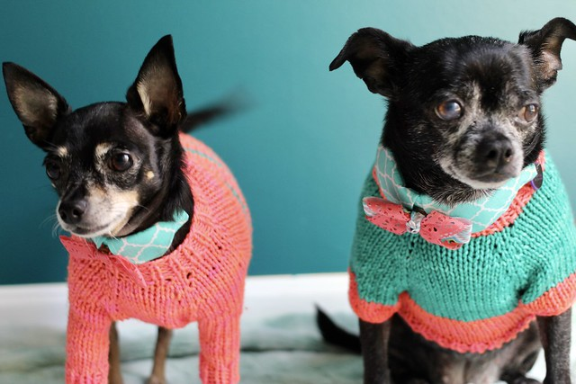 Sister sweaters