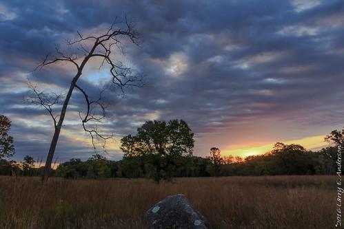 eaglepark hdr minnesota clouds expressivesky forest goldenhour highdynamicrange landscape prairie rocks seasons sky summer sunrise trees