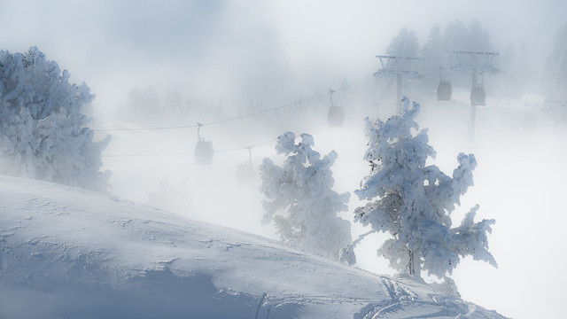 Brume d'hiver, Olympus E-M5MarkII, Lumix G Vario 14-140mm F3.5-5.6 Asph. Power OIS