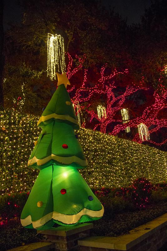 Christmas lights_45