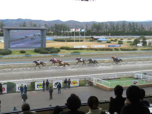 金沢競馬場の指定席から見たレース風景