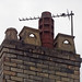 Chimney Pots, Clytha Square, Newport 12 December 2017