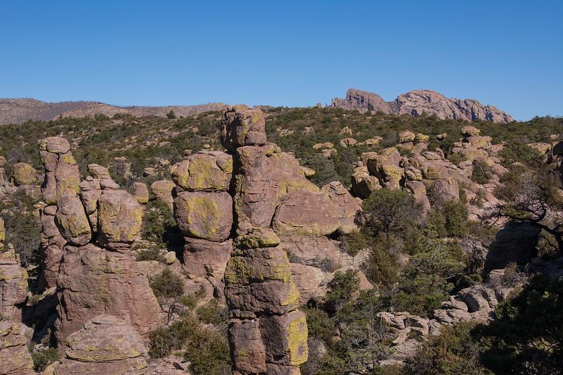 Rock Tops Tree