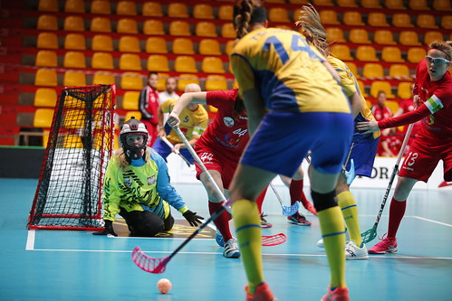 WFC 2017 Sweden - Poland