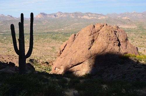 Lost Dutchman Saguaro and the rock