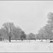 Bury Knowle Park