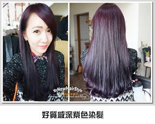 好質感深紫色染髮