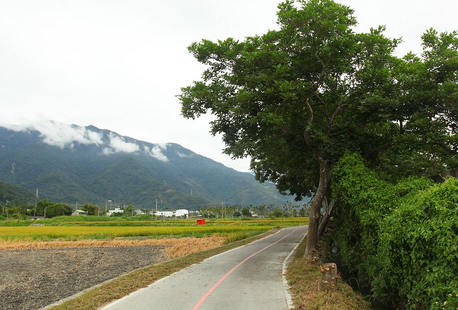 台東景點 關山自行車道14